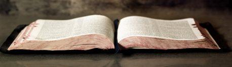 Exegeza biblică